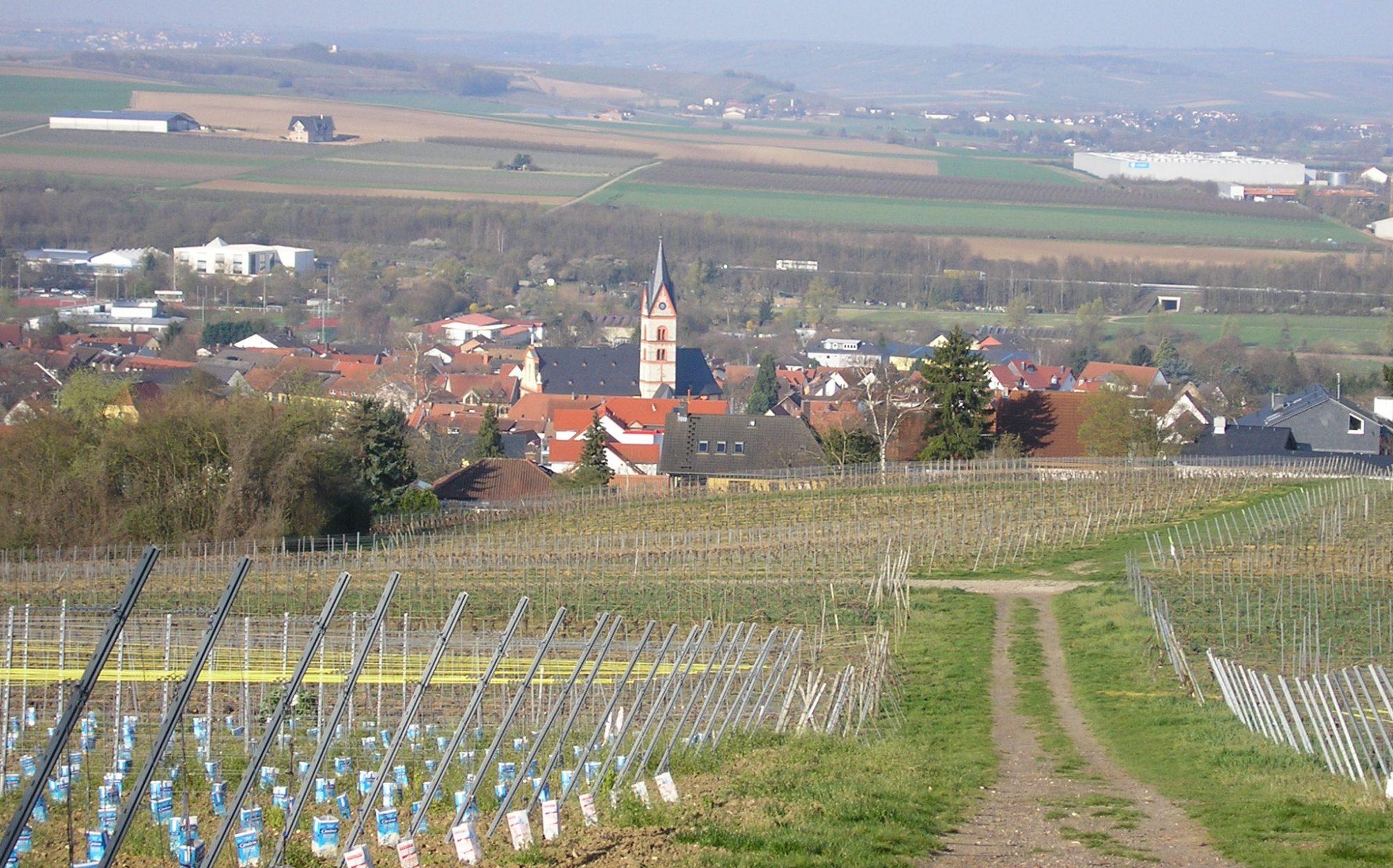CDU Stadtverband Nieder-Olm